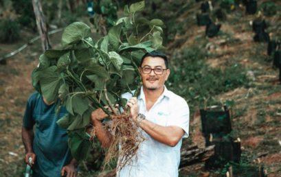 Keep up the great work Fiji Kava!